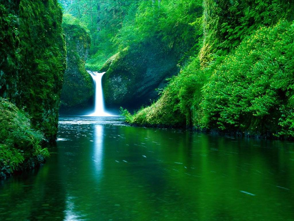 Amazonian Water Fall Wallpaper